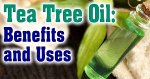 Tea Tree Oil and its benefits