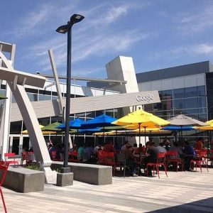 Delivering Shade on Campus Expansion: Keeping Google Cool