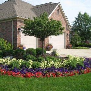 Flowers Can Add a Spot of Color to Your Yard
